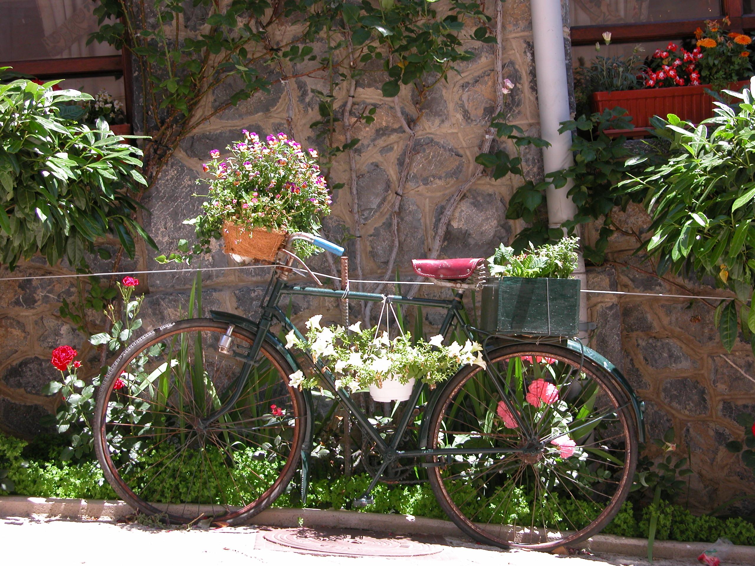 decoracao jardim encantado rustico:Fotos De Decoracao De Jardim 12 Pictures to pin on Pinterest