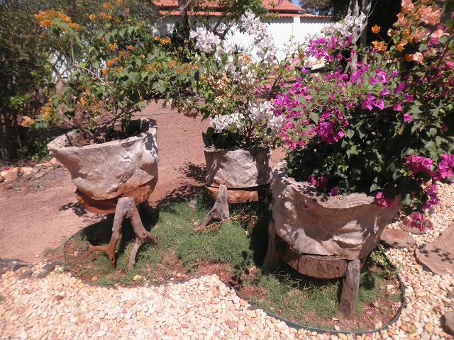 Dicas de decoração de Jardim rústico fotos  Decorando Casas