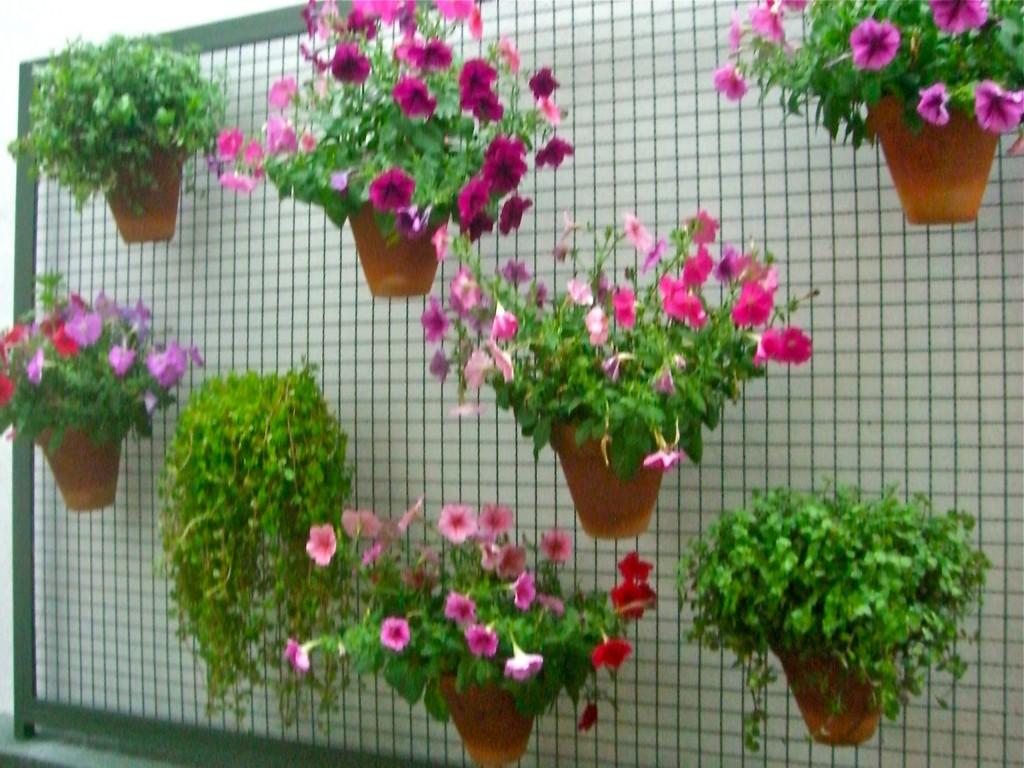 Dicas e fotos de jardinagem em apartamento  Decorando Casas