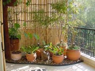 dicas-jardinagem-em-apartamento