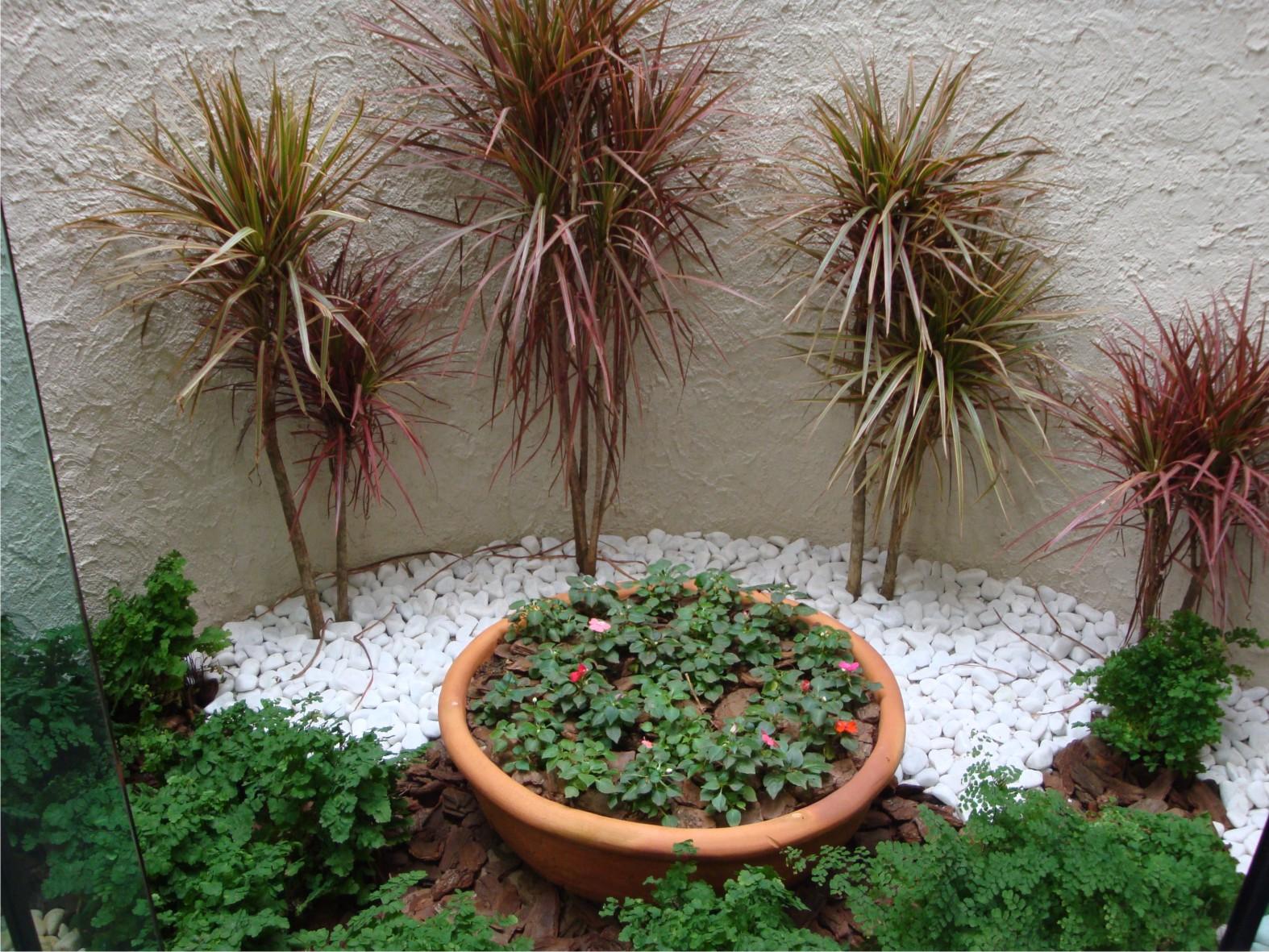 fotos de jardins de inverno #3C6734 1574 1181