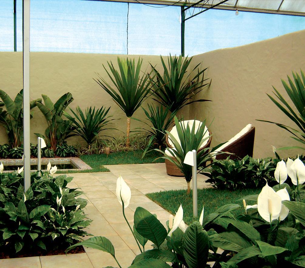 Dicas e fotos de paisagismo e jardinagem para sua casa  Decorando