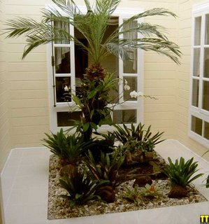 Decora o para jardim de inverno pequeno decorando casas for Cascata da interno