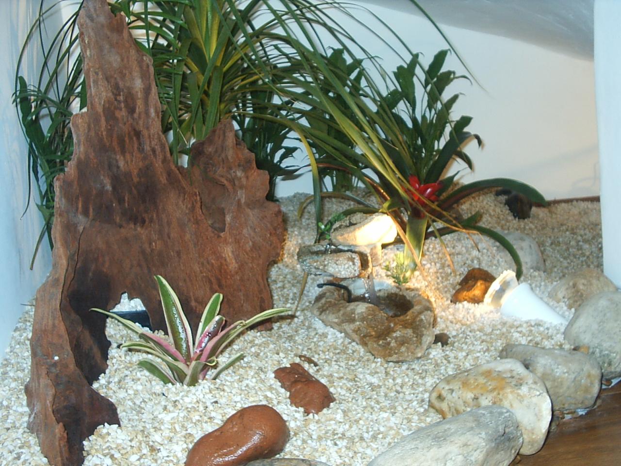 pedras jardins pequenos : pedras jardins pequenos:Decoração para jardim de inverno pequeno