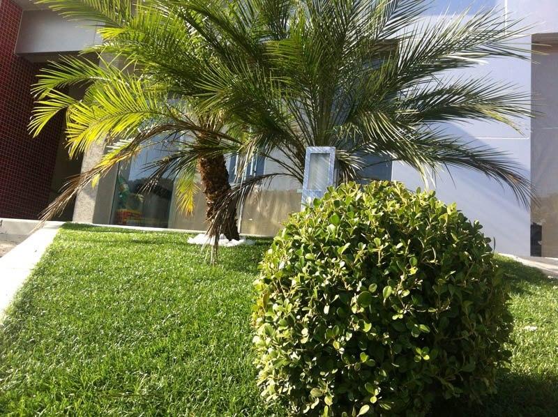 grama sintetica em jardim de inverno : grama sintetica em jardim de inverno:Grama sintetica para jardim preço e fotos
