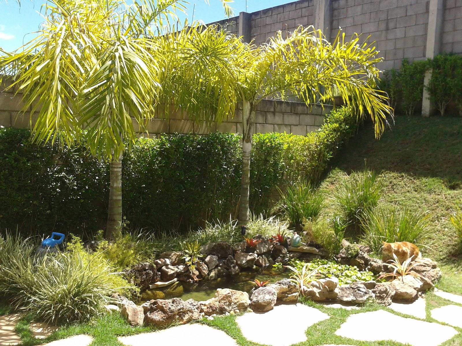 Fotos de coqueiros para jardins grandes e pequenos for Lagos de jardin