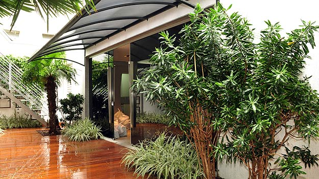 plantas jardim externo : plantas jardim externo:Plantas para jardim externo Dicas