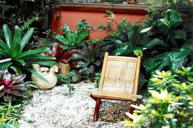 Como fazer um belo jardim para casa gastando pouco?  Decorando Casas