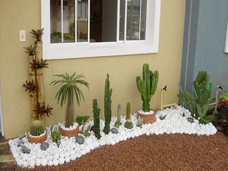 como-fazer-um-jardim-gastando-pouco