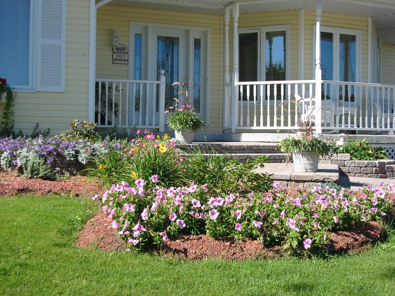 Como fazer um jardim simples e barato no quintal - Adsl para casa barato ...