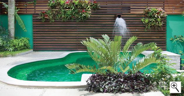 Dicas de paisagismo e jardinagem com piscina decorando casas for Piscinas e jardins