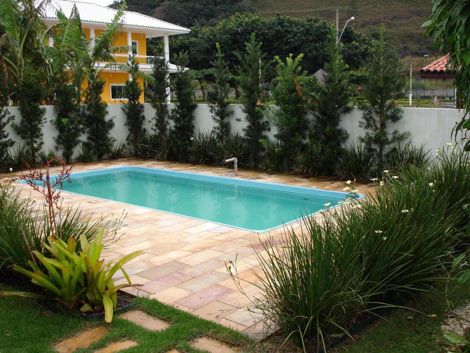Dicas de paisagismo e jardinagem com piscina decorando casas for Plantas para piscinas