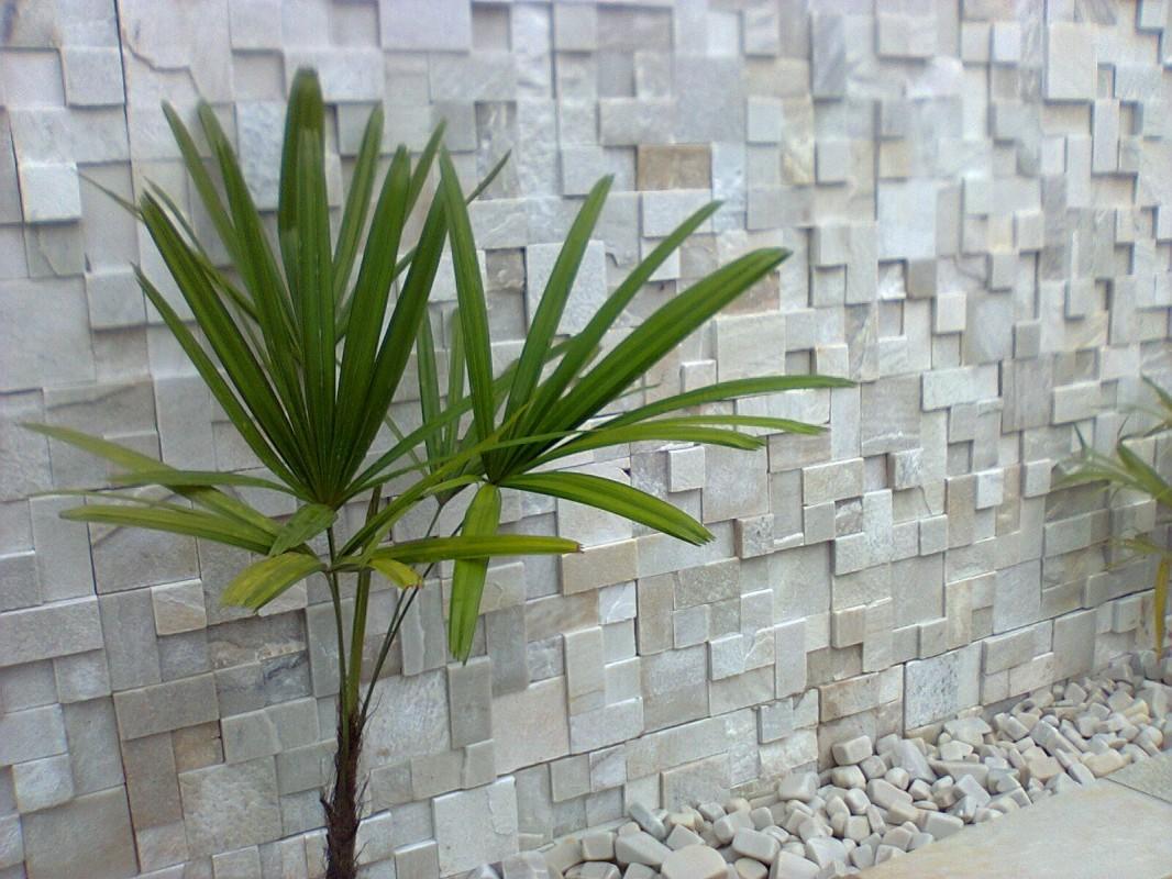 Revestimento de parede externa em pedra Decorando Casas #2F4013 1066 800