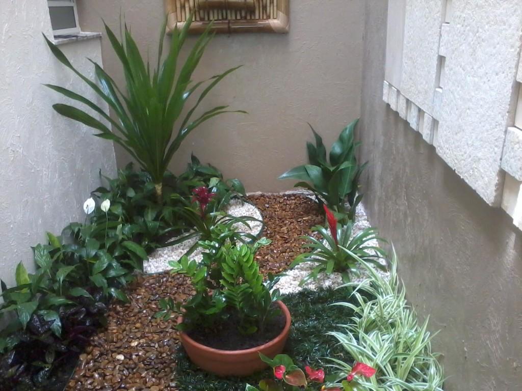 Tipos de flores para jardim interno e de inverno for Interno s