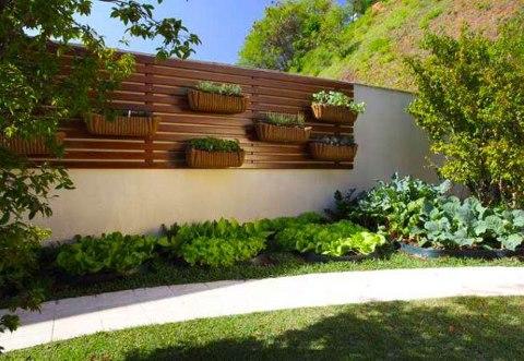ideias para jardim e horta : Decora??o para quintal pequeno com piscina Decorando Casas