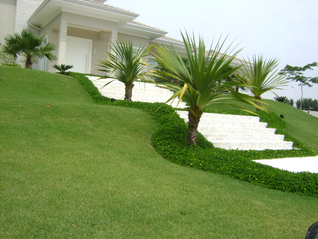 grama sintetica para jardim florianopolis : grama sintetica para jardim florianopolis:Fotos da Grama Esmeralda – Detalhes e preços