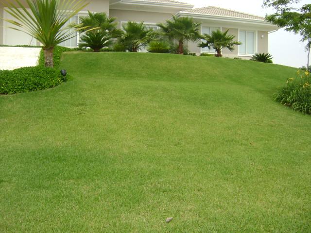 Fotos Da Grama Esmeralda – Detalhes E Preços ~ Fotos De Jardins Gramados