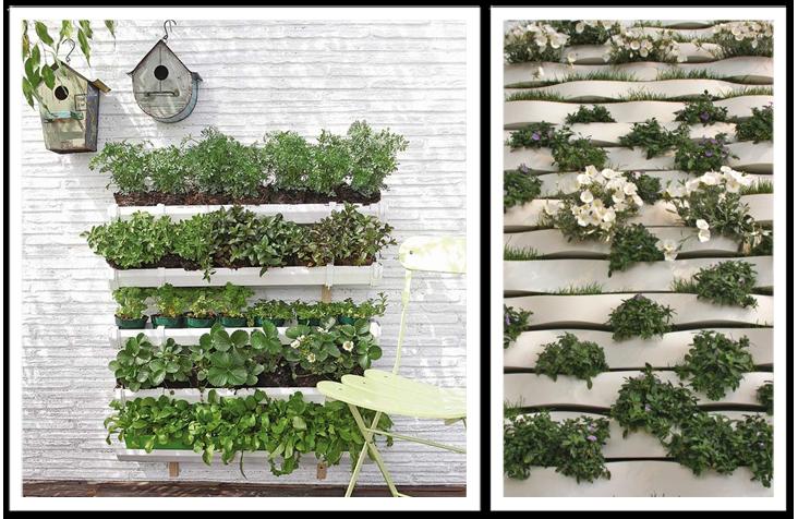 jardim vertical escada:285021 jardim de inverno embaixo da escada Modelos de jardim de