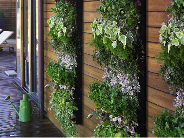 jardim vertical simples : jardim vertical simples:Vertical Herb Garden Idea