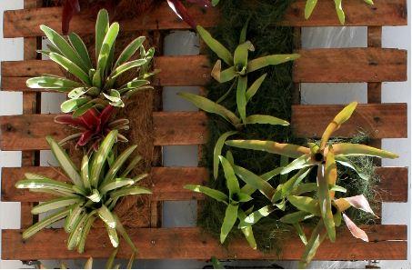 como fazer um jardim vertical simples e barato