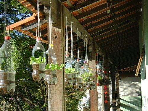 jardim vertical de garrafa pet passo a passo : jardim vertical de garrafa pet passo a passo:Jardim suspenso com garrafas pet passo a passo
