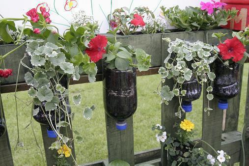cerca de jardim barata : cerca de jardim barata:Jardim suspenso com garrafas pet passo a passo