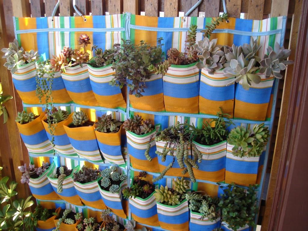 jardim vertical ideias:Plantas Para Jardim Vertical