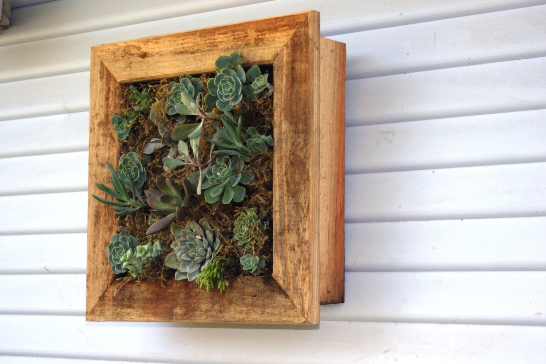mini jardins verticais : mini jardins verticais:Como fazer um jardim suspenso e vertical passo a passo
