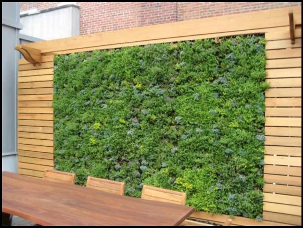 mini jardim de temperos : mini jardim de temperos:Como fazer um jardim suspenso e vertical passo a passo