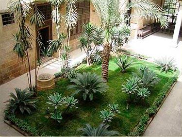 plantas jardim nomes : Nomes de plantas para jardim Decorando Casas