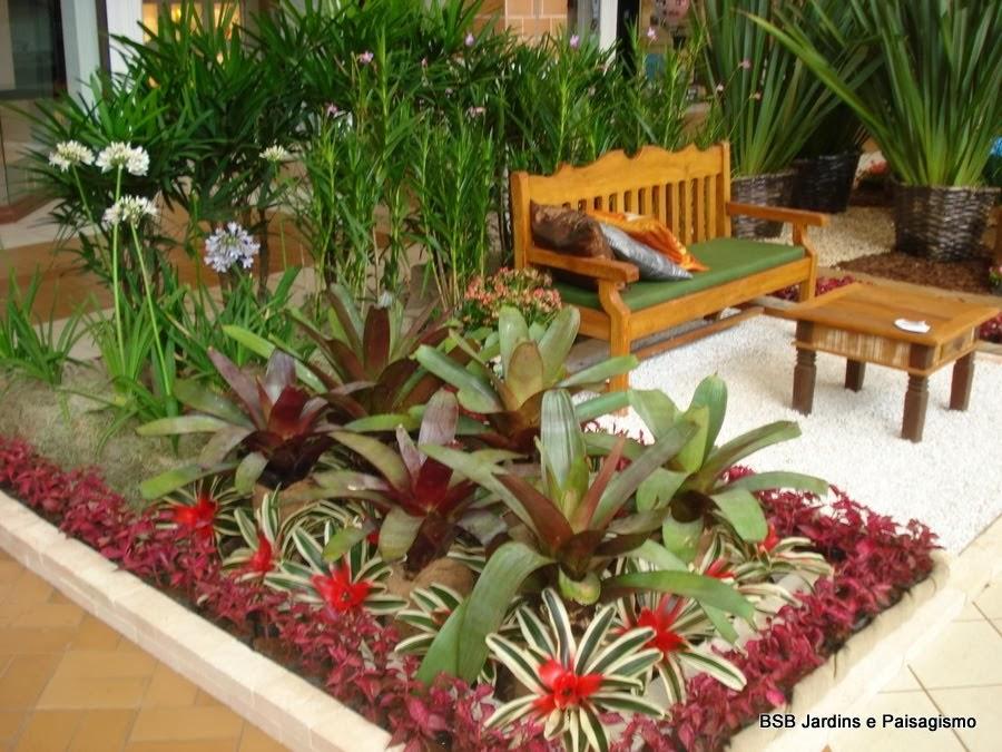 plantas para jardim altas:fotos de plantas grandes e altas para jardim