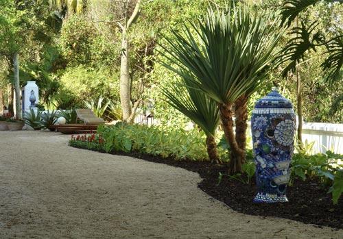 plantas para jardim grande:Plantas grandes e altas para jardim