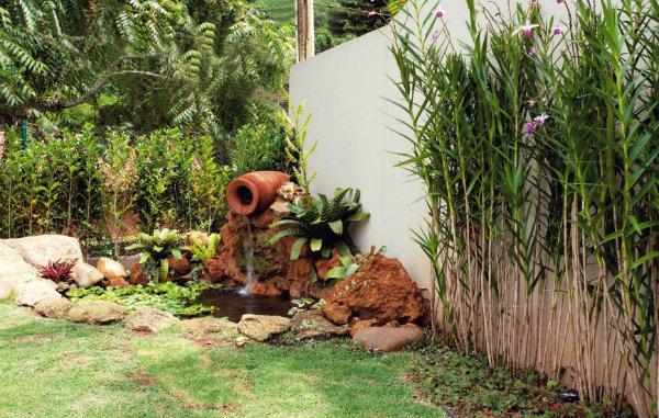 Fotos de plantas grandes e altas para jardim
