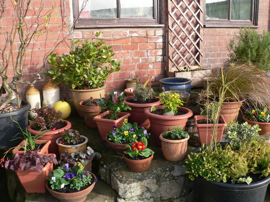 plantas jardins vasos : plantas jardins vasos:Decoração de jardins com vasos de flores