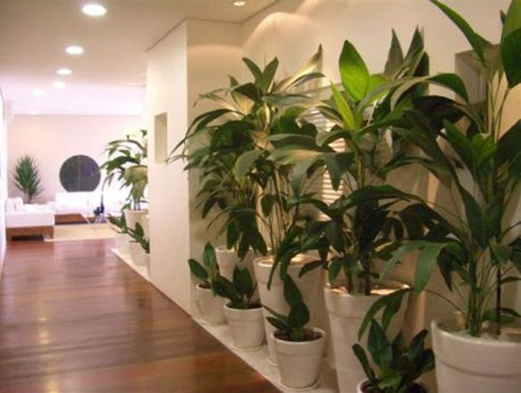 plantas jardins vasos : plantas jardins vasos:Landscape with Pots