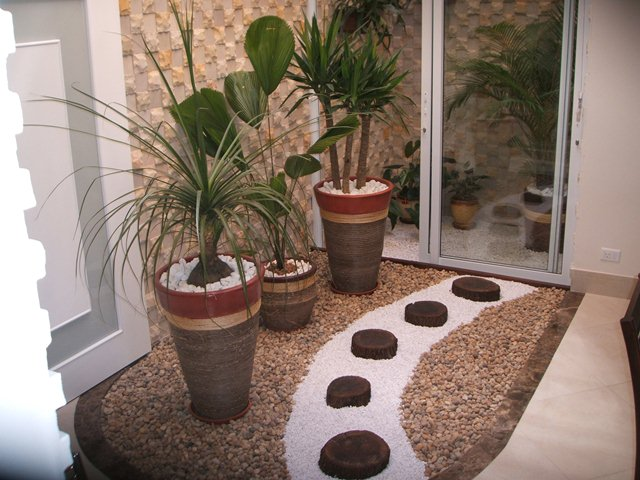Dicas de paisagismo e jardinagem com vasos  Decorando Casas