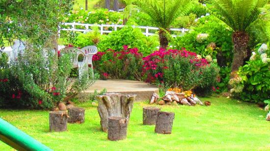 decoracao jardim pedras: de paisagismo e jardinagem residencial com pedras