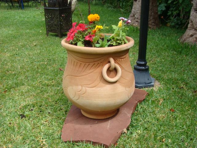 Dicas de paisagismo e jardinagem com vasos decorando casas for Vaso grande