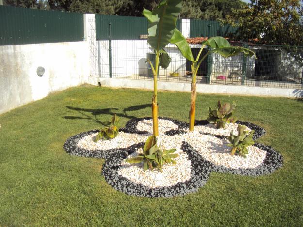 Dicas de paisagismo e jardinagem residencial com pedras Decorando Casas -> Decoração De Jardim Com Pedras Grandes