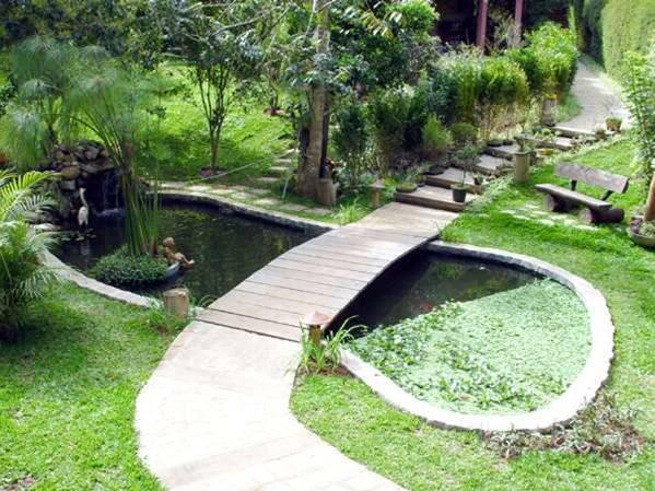 mini jardim residencial:Dicas de lagos e cascatas para jardim