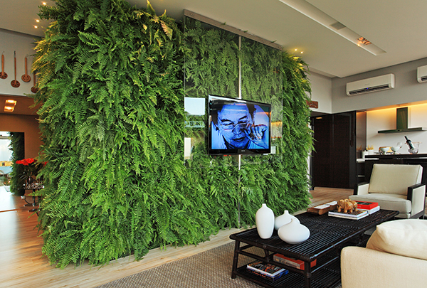 Fotos de plantas artificiais para decora o de casas Plantas para paredes verdes