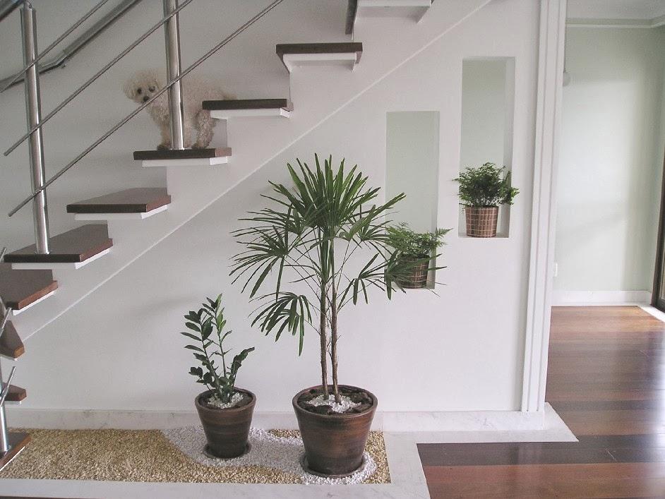 escada jardim embaixo:Dicas de jardim de inverno embaixo da escada