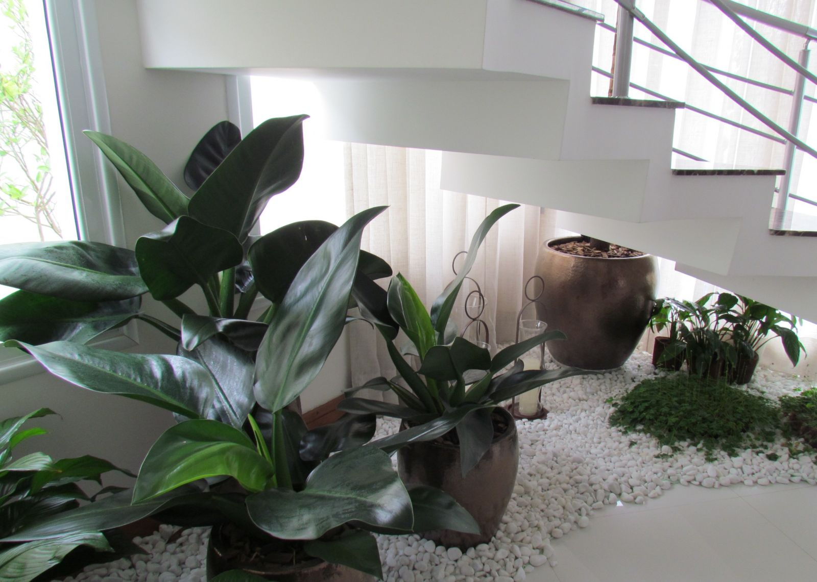 jardim embaixo da escada:Dicas de jardim de inverno embaixo da escada #475E41 1600 1141