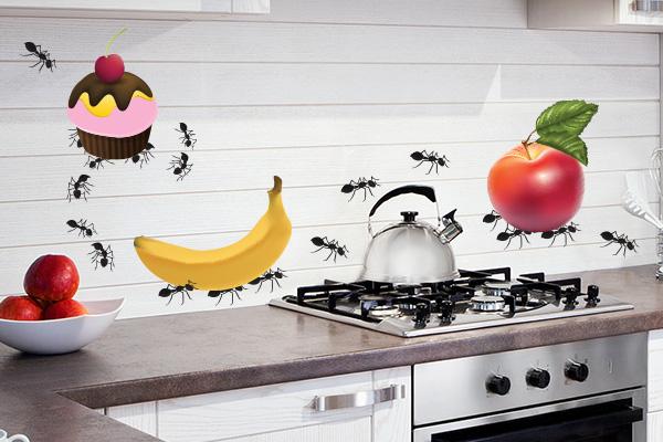Papel De Parede No Armario De Cozinha : Adesivos de parede para cozinha decorando casas