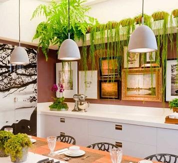 Resultado de imagem para plantas cozinha
