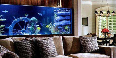 Como decorar a sala com aquário