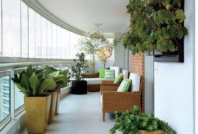 Plantas-para-varanda-do-apartamento