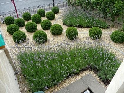 Fotos-de-decoração-jardinagem-e-paisagismo