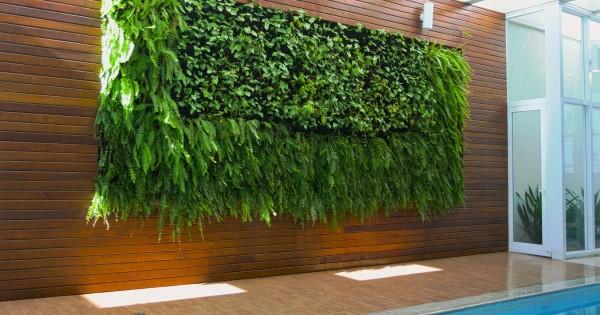 Fotos de decoração jardinagem e paisagismo