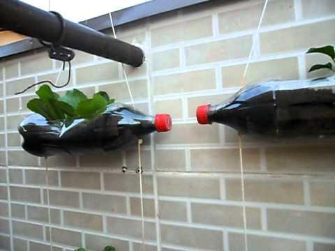 Como-fazer-uma-horta-com-garrafa-pet
